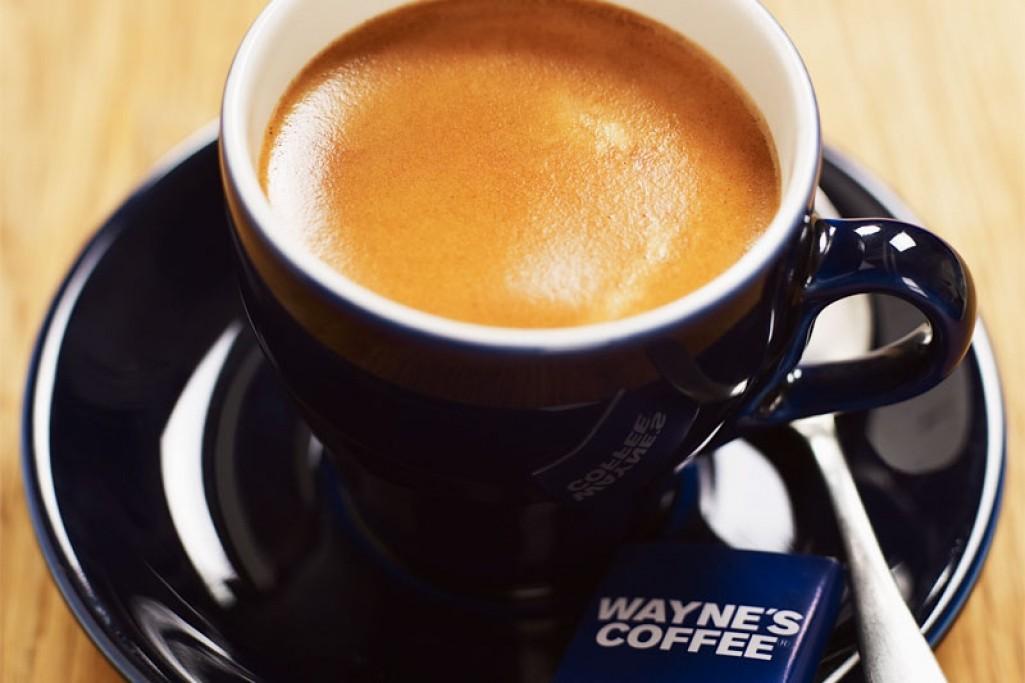 Wayne's Coffee Drottningg. 18